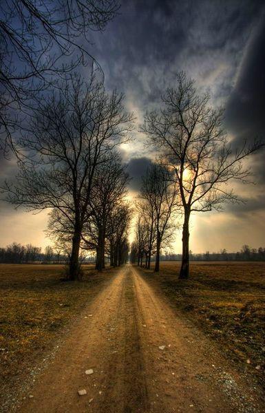 ¡ Ya no quedan más caminos! | IDEARIO ALTERNATIVO